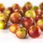 Camu-camu meyve — Stok fotoğraf