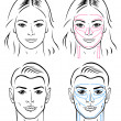 Royalty-Free Stock Vector Image: Facial massaging lines for man and woman