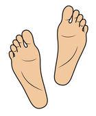 Footprints — Stock Vector