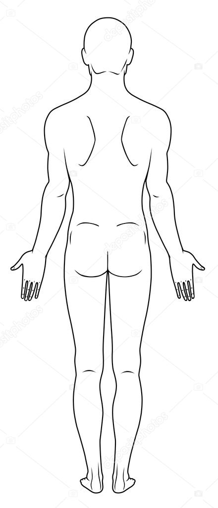 Full length back view of a standing naked man. You can use this image for fashion design and etc.  Stock Vector #6884986