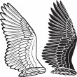 Royalty-Free Stock Vector Image: Dove wings