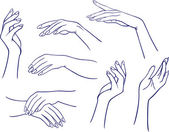Woman's hands — Stock Vector