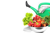 Watering can and vegetables. — Stock Photo