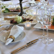 Wedding dinner — Stock Photo #7069347