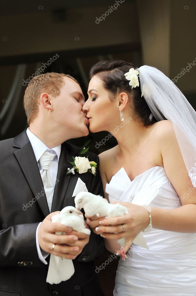 Newlyweds holding white doves in their hands  Stock Photo #7136593