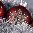 Christmas balls — Stock Photo #7238691