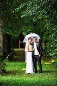 Groom and bride with umbrella — Stock Photo