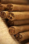 Heap of cigars — Stock Photo