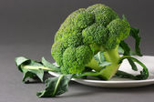 Broccoli on plate — Stock Photo
