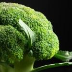 Broccoli close-up — Stock Photo