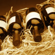 Wine bottles in straw — Foto de stock #7678987