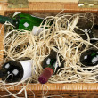 Picnic basket with wine — Stockfoto