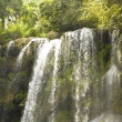 Stock Photo: El Nicho waterfall