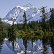 Stock Photo: Picture Lake Reflection