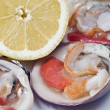 Raw clams and lemon. - Stock Photo