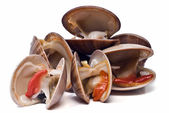 Fresh clams over white background. — Stock Photo