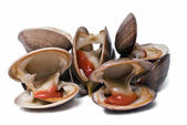 Clams to eat. — Stock Photo