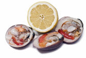 Clams and lemon to eat. — Stock Photo