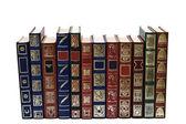 Kitap koleksiyonu. — Stok fotoğraf