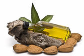 Bottle of almond oil on a branch and some almonds. — Stockfoto