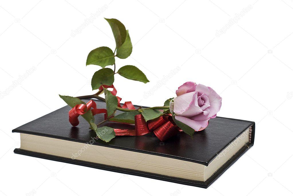 彩蝶飞舞1到5级效果图-玫瑰书盒…_来自爱若晨曦花店的图片分享-堆糖网   [!] 玫瑰书 30 粒