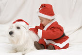 A pair of little Santas. — Stock Photo