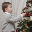 Stock Photo: Enjoying decorating Christmas tree.