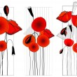 Set of beautiful poppies illustration — Stock Vector