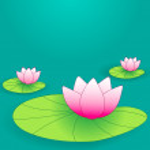 Beautiful lotus flowers — Stock Vector #7091671