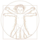 Vitruvian child — Stock Vector