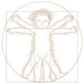 Vitruvian child — Stock Vector