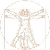 Vitruvian man — Stock Vector