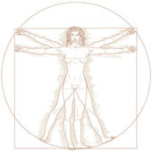 Vitruvian woman — Vector de stock