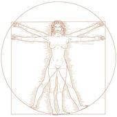 Vitruvius kadın — Stok Vektör