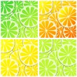 Set of citrus fruit background illustrations — Stock Vector