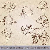 Vintage style cute lamb illustrations — Stock Vector