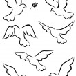 Flight of dove — Vector de stock