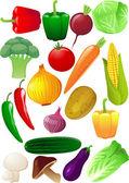 ベクトル野菜 — ストックベクタ