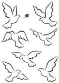 Flight of dove — Stock Vector