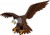 Eagle fågel — Stockvektor