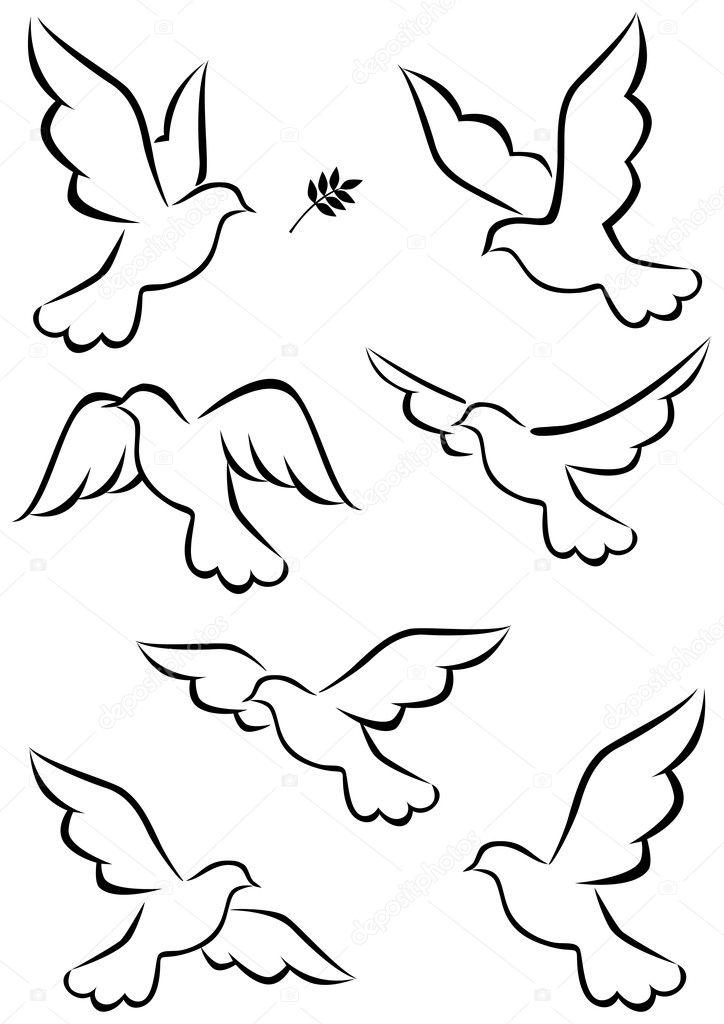 飞行的鸽子矢量插画