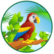 Macaw cartoon — Image vectorielle