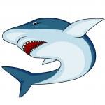 Angry shark — Stock Vector