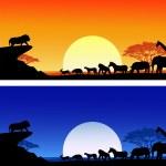 Safari silhouette — Stock Vector