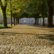 Lane in palace garden in Rogalin — Stock Photo