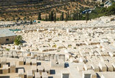 Old cemetery on Mount of Olives in Jerusalem — Stock Photo