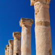 Ancient Greek columns — Stock Photo