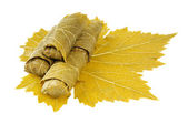 Dolma on grape leaf — Stock Photo
