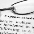 Stock Photo: Expense schedule