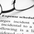 Expense schedule — Stock Photo